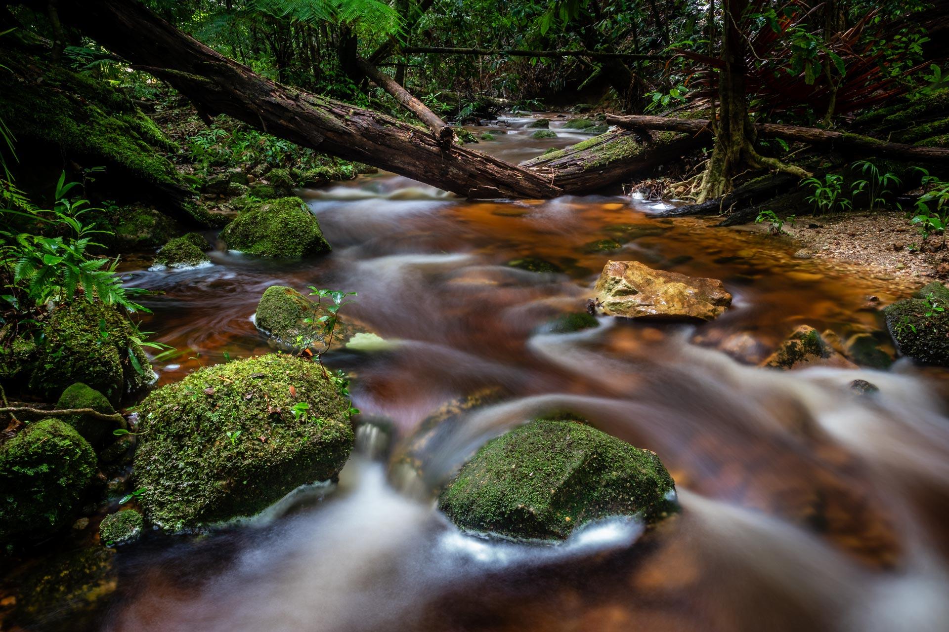 Coorabakh National Park