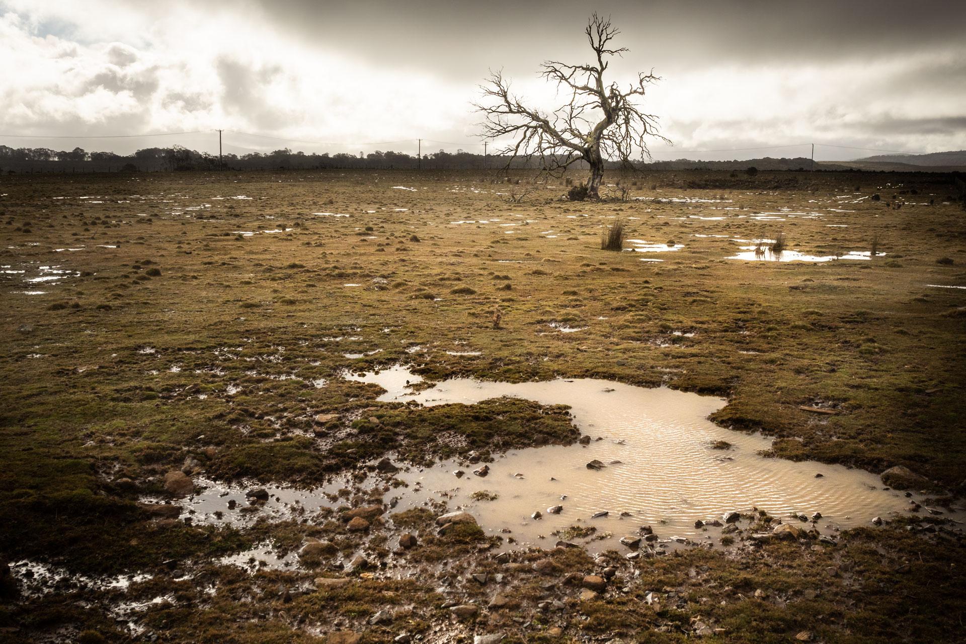 Tasmania Desolation